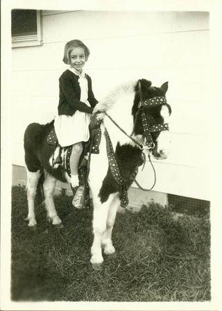 Julie pony