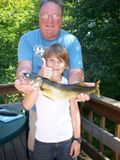 Straus fish