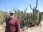 John cactus