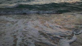 Fla Beach Waves 048