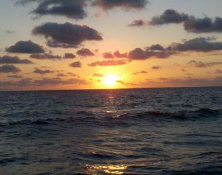 Fla Beach Waves 047