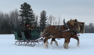 Two Horse Sleigh