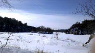 State Park Three 049