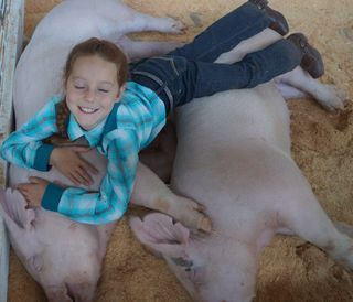 Girl on Pigs crop