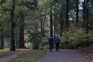 Willie and Julie Walking