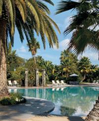 Paradise Pool Crop