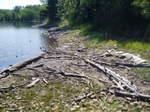 Wood_in_bay