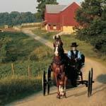 Amish13
